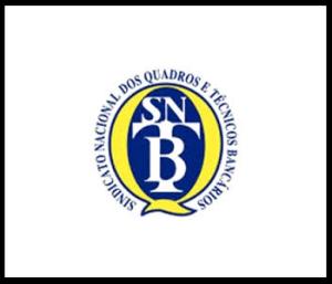 sntb-300×257